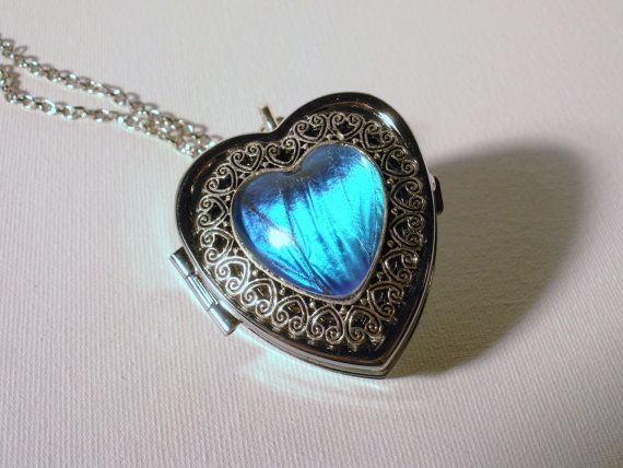 Real Morpho Butterfly Wing Music Box Locket by NaturesSimpleBeauty