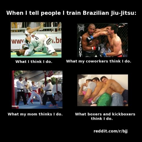 HAHA so true!!!! bottom right image is the EXACT image i get in my head when my friends do jiu jitsu :P:  Internet Site, Fit,  Website, Web Site, Brazilian Jiujitsu, So True, Bjj Mma, Martial Art, Brazilian Jiu Jitsu