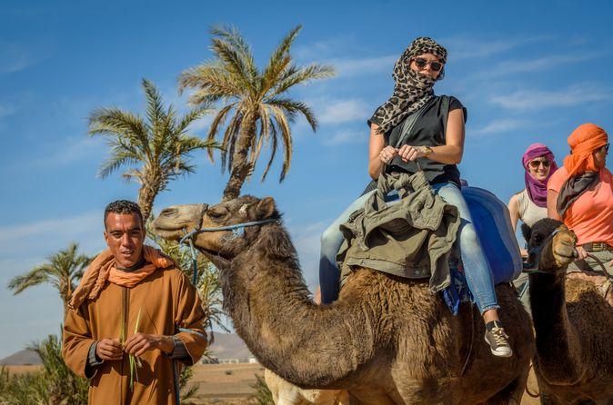 Excursion à dos de chameau dans le désert et dans la palmeraie au départ de Marrakech, avec une pause thé chez l'habitant