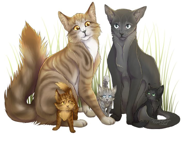 Leafpool X Crowfeather By Woofydragoncat68 Deviantart Com