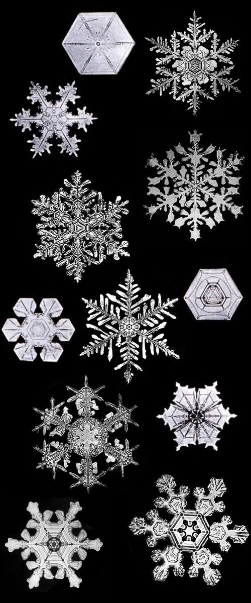 From Wilson Bentley's lifelong obsession with perfectly capturing and cataloguing photographs of every variety of snowflake.
