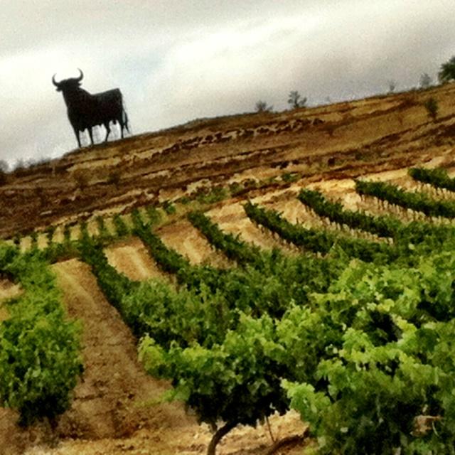 Charming accommodation in Spain: sleep amongst vineyards. | spain ...