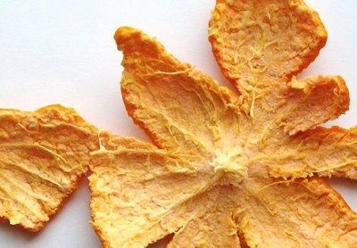 Wonderful and Natural Uses of Orange Peel - Orange peel works wonder on the skin, it helps to reduce pimple acne, wrinkles and patchy skin, when applied as face mask or when dropped in bathing water and used to scrub over the skin.  Dry the peel, powder it, and then make a simple scrub by adding just enough milk to the powder to get a consistency you like.  The antioxidants and vitamin C in the peels helps to get a clean and glowing complexion after a few weeks of trying it. PLUS insect…