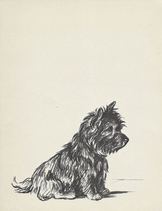 TERRIER Dog Print, Lucy Dawson,1930s Wall Decor, Wall Art Illustration, Pet Book…                                                                                                                                                                                 Plus