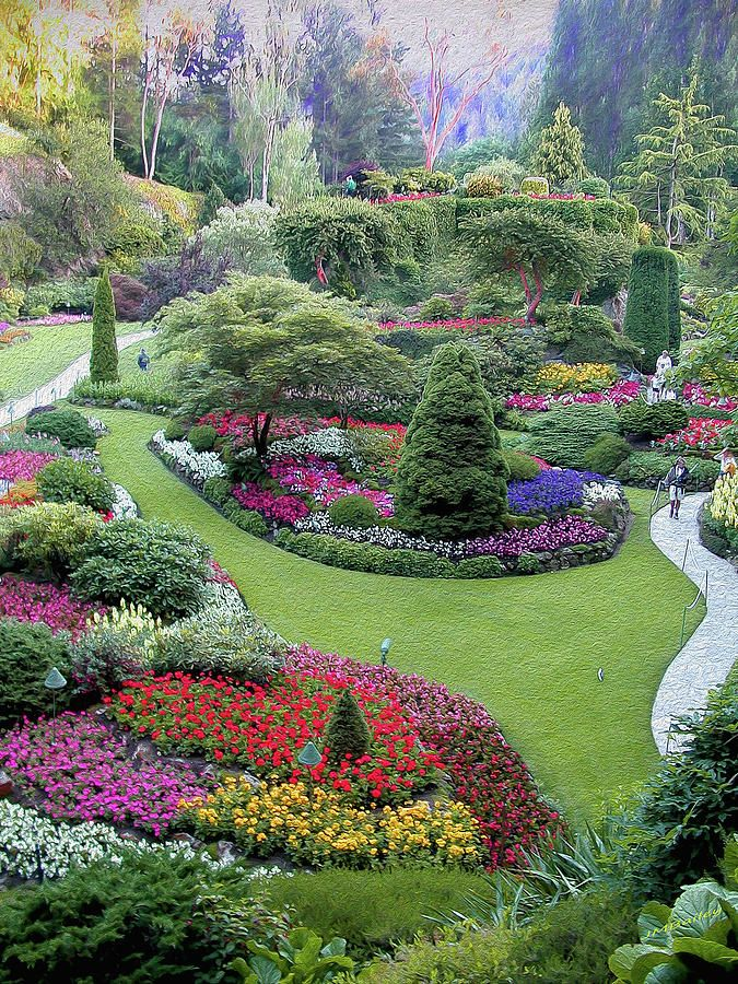 589840fe7fc1417eceda135091e3c982 - How Much Is Admission To Butchart Gardens