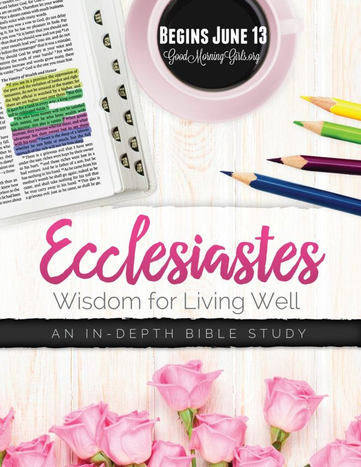 New living bible study guide