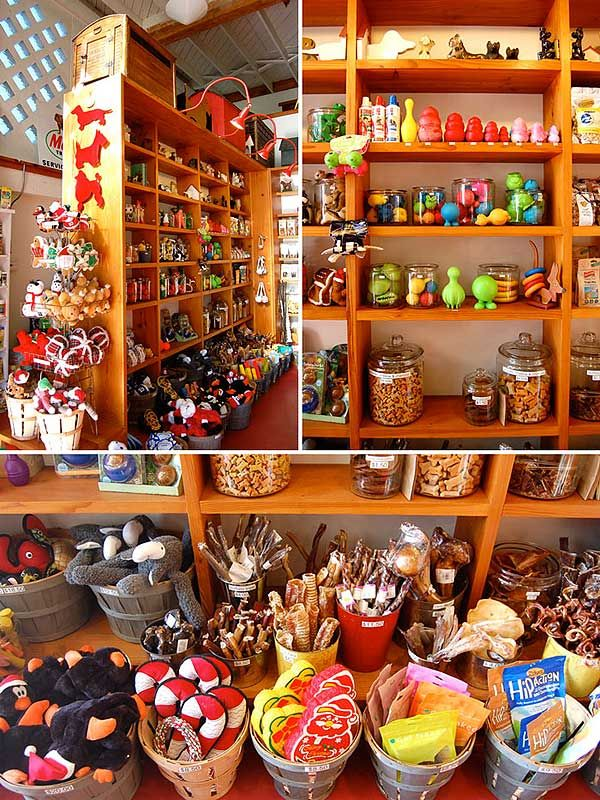 Small Dog Specialty Shops