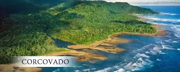 Resultado de imagen para imagenes de parque nacional corcovado