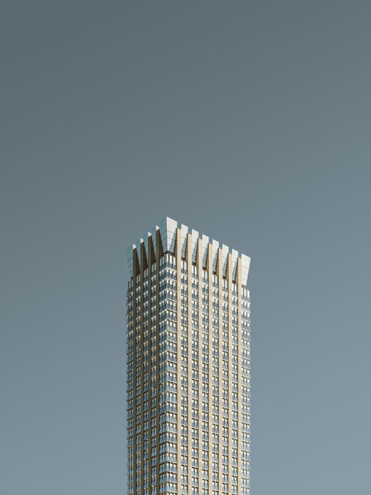 The Singularity of the Skyscraper: Studies in Form and Façade