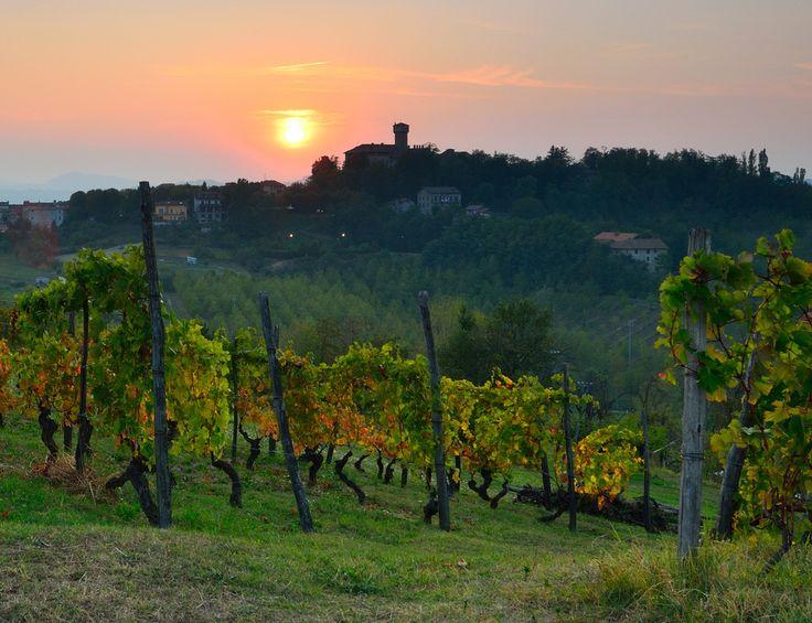 Tagliolo, High Monferrato