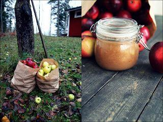Äppelmos med vanilj kanel och kardemumma ~ Nam Nam