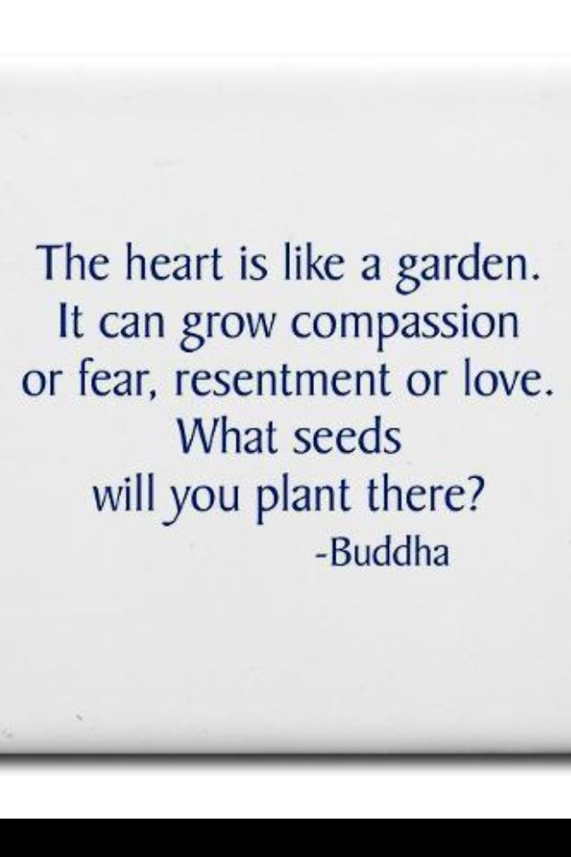 The heart is like a garden. It can grow compassion or fear, resentment or love. What seeds will You plant there? **quote by Jack Kornfield -- not Buddha!!**Buddha's Little Instruction Book, page 11