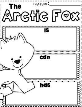 1000 images about arctic fox on pinterest. Black Bedroom Furniture Sets. Home Design Ideas