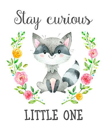 Stay Curious Little One Print - Woodland Nursery Decor - Raccoon Wall Art- Instant download ♥Welcome to FloralArtFantasy shop!♥ ♥Instant download printable artwork. ♥No physical item will be shipped. You are purchasing a high resolution file Save money and print yourself! Print more than once to give as gifts. ♥You will receive this print in 8x10 inches size. ♥ Instant download digital file: • 8x10 inches • 300 dpi • 1 JPG digital file ♥Here's how it works (instant download order): - Af...