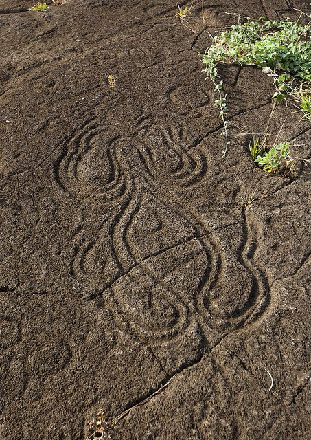 """Petroglyph In Paka Vaka Rock Art Site, Easter Island, Chile    Symbols have been found on a number of stones on Easter Island, several thousands of petroglyphs can be found, most of them represent animals, like the legendary """"bird man""""."""