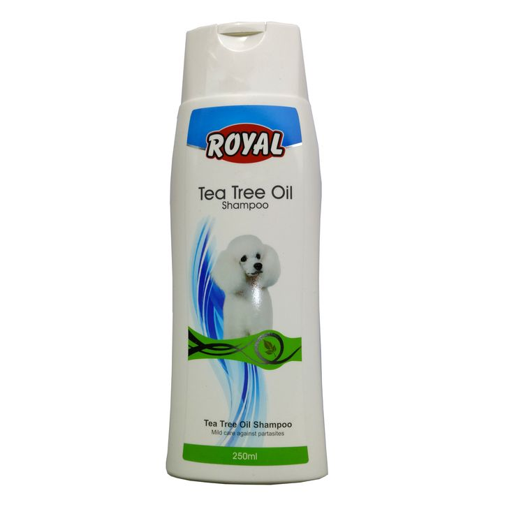 Best Oral Rinse For Dogs