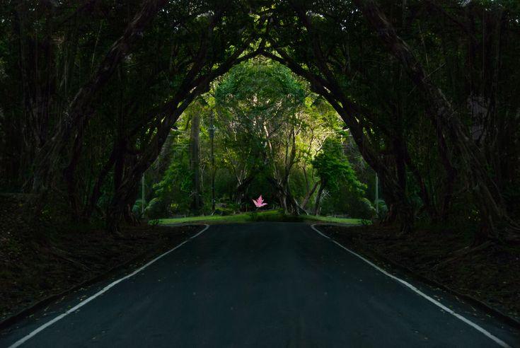 Isla Contadora, Pearl Islands Panama - Fantasia Photographic Arts
