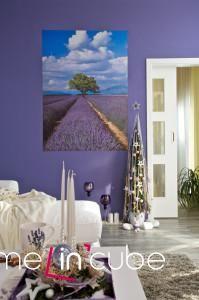Barvu stěn vybral majitel podle levandulových polí.