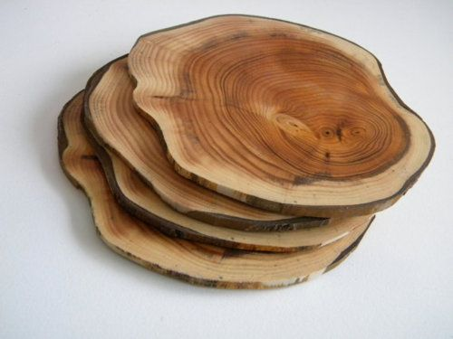 // I actually just brought home an Aspen tree log with the intent on making coasters!  This is perfect!!