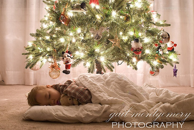 Under the tree pic by Gail Montgomery Photography