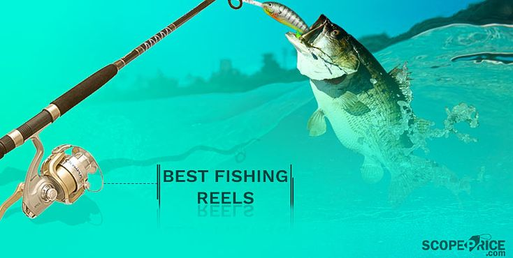 Check out our review on the best fishing reels or spinning reels if you want to catch any type of fish in any type of water- salt water or fresh water.