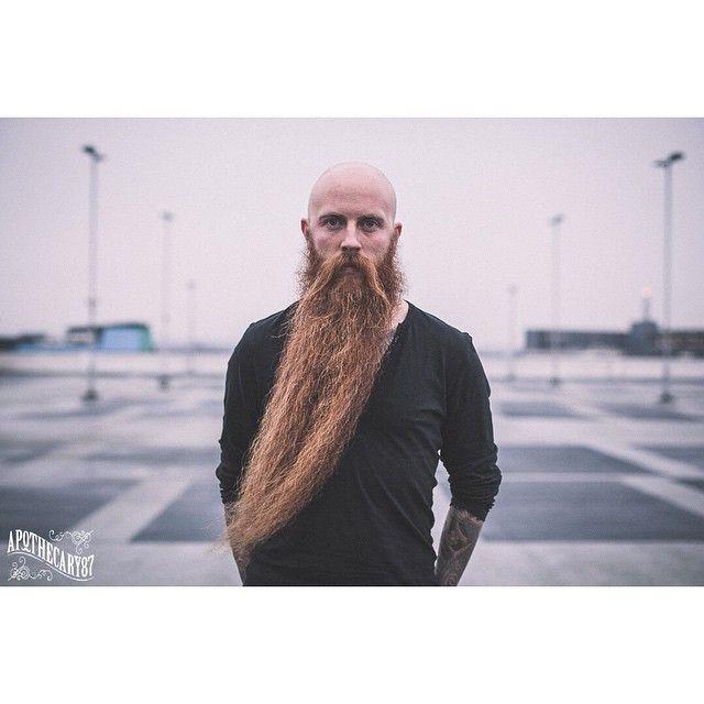 Michael Legge -very long full thick red beard and huge mustache beards bearded man men natural length tattooed tattoos bald ginger #beardsforever