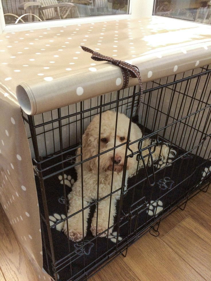 dog crate covers extra large 36 inch petco medium dogs