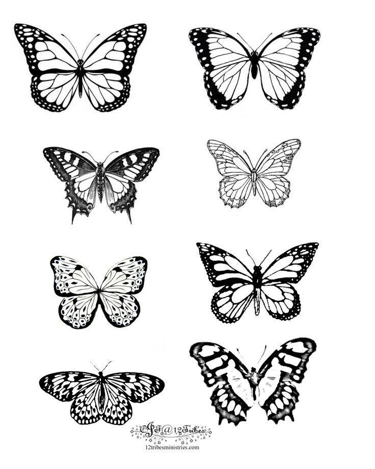 8 butterflies Tatuaze Butterflies Tatuaze Tiny