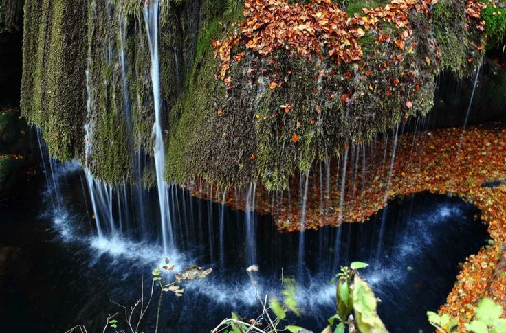 The Bigar Waterfall -Anina Mountains  #Romania