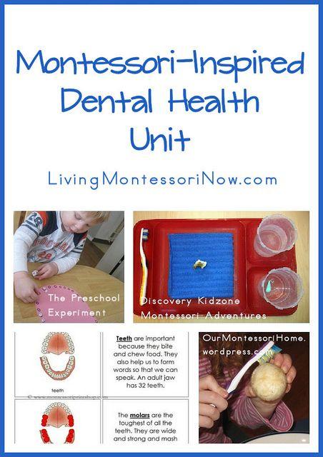 Montessori-Inspired Dental Health Unit by Deb Chitwood, via Flickr