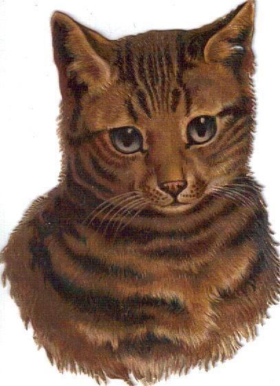 Victorian Die Cut Scrap Tabby Kitten c1880s