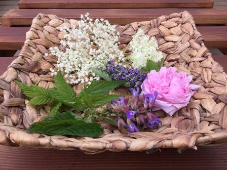 My tea today: Elderberry, mint, lavender, sage, stinging nettle and rose