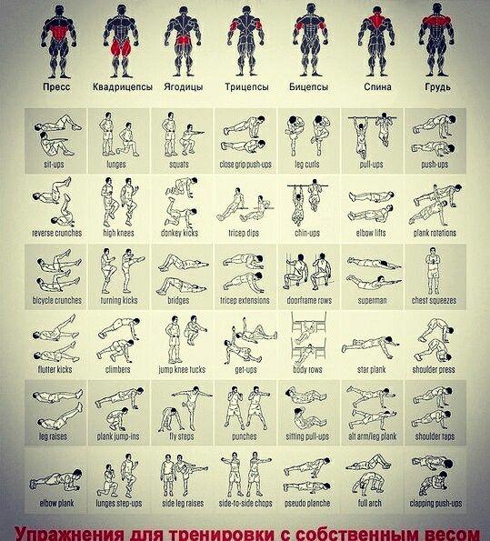 12 besten Bauch Training Bilder auf Pinterest