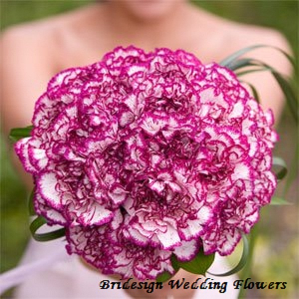 Purple carnations for a bridal bouquet... Love it!