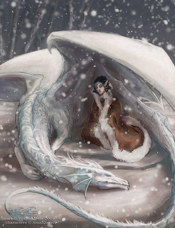 Winter dragon sheltering his beloved keeper <3