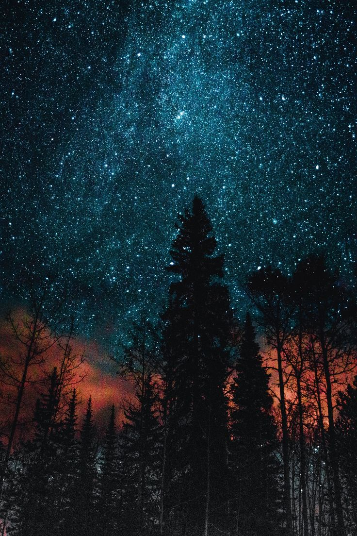 Reveal - This was one of my astro photos I took while up north in Smithers, BC. The skies up there are so dark (or bright if you consider the stars); it's beautiful.