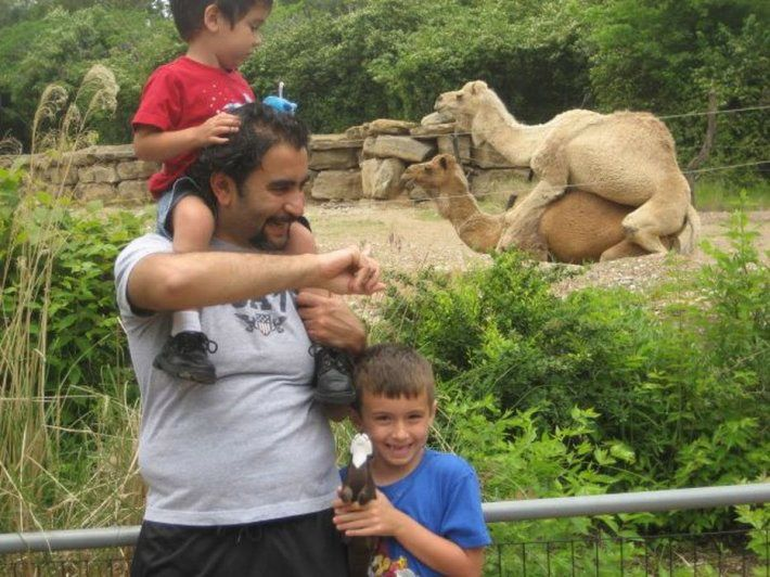 Family Portrait with camels humping at the zoo ~ 18 Funny Awkward Family Photos