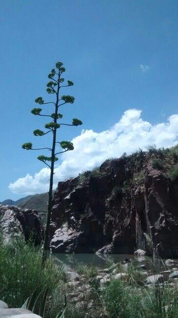 Cacheuta, Mendoza, Argentina. Aguas termales.