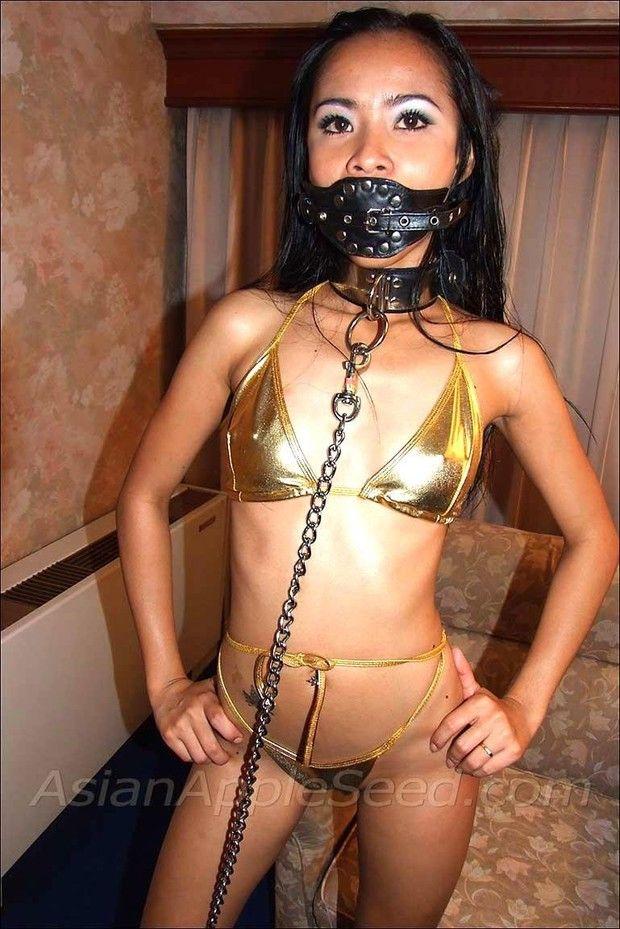 asian ladyboy porno bdsm slave