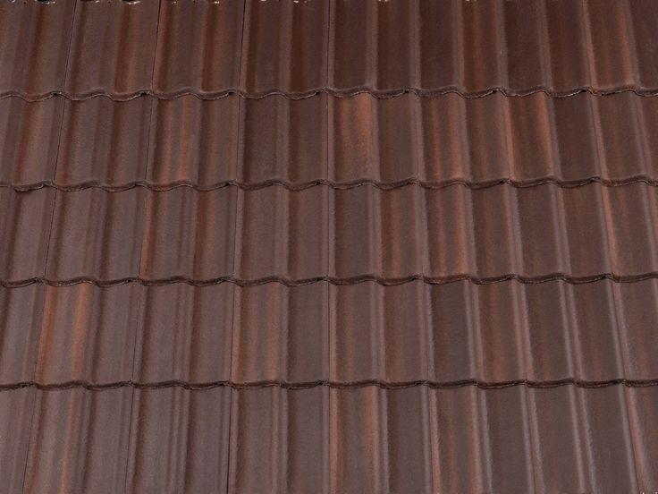 Colour: Brown Brindle.