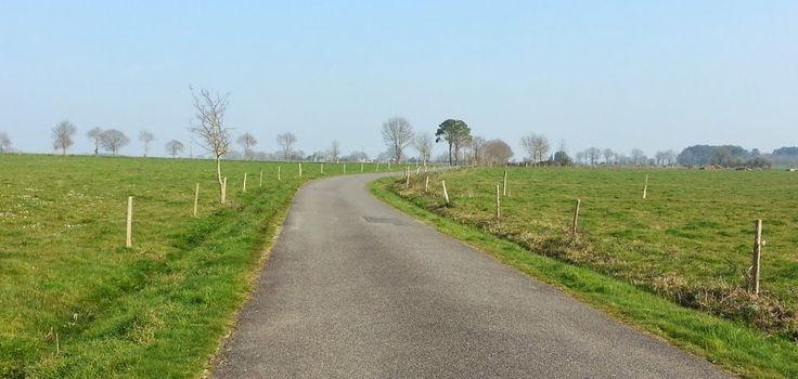Petites routes vers Avessac