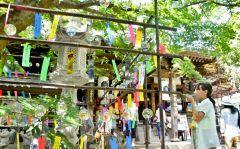 かえる寺の愛称で親しまれる小郡市横隈の如意輪寺では風鈴が涼しげな音を奏でています 暑い時期にも小郡に足を運んでほしいと住職の原口元秀げんしゅうさんのアイデアで始まり今年で年目になるそうです 月末まで飾られていますのでぜひ足を運んでみてください tags[福岡県]