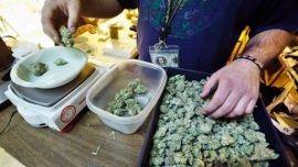 Alaska Se Convierte En El Cuarto Estado De EE.UU. En Legalizar El Cannabis
