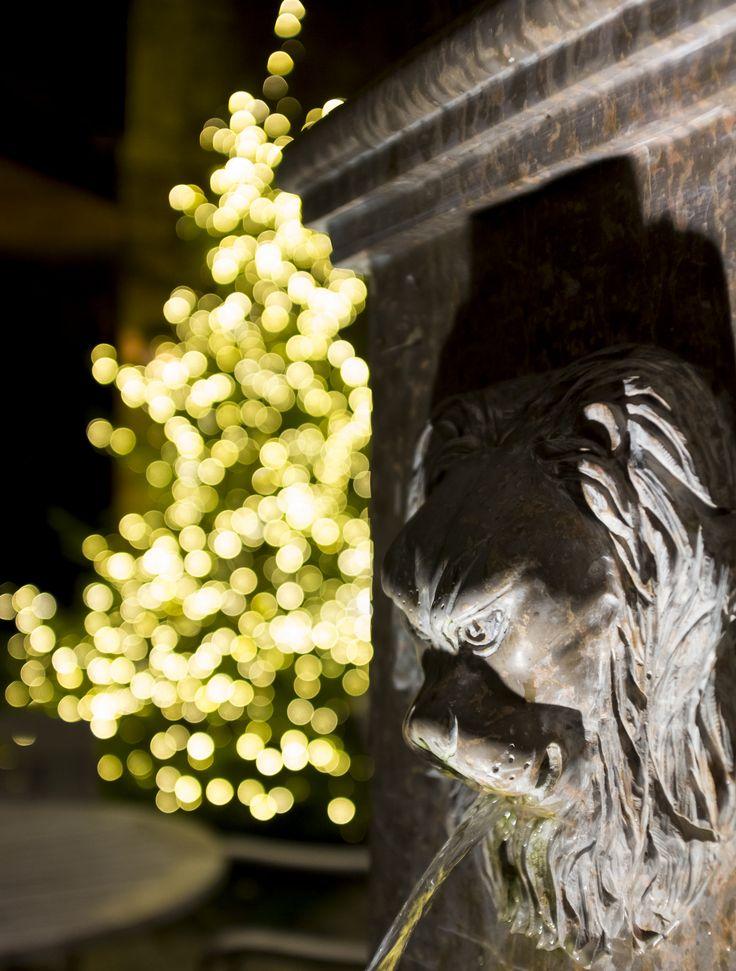 https://flic.kr/p/PHniRh | Christmas Fountain
