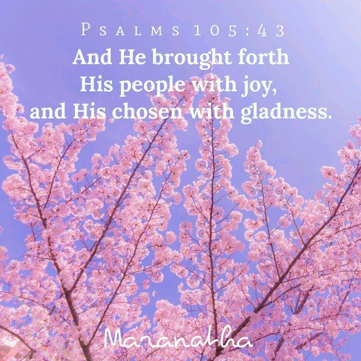 Psalms 105:43 (KJV) And he brought forth his people with joy, and his chosen with gladness: