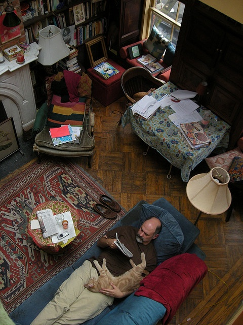 lovely chaos, slippers, a cat and his reading pal