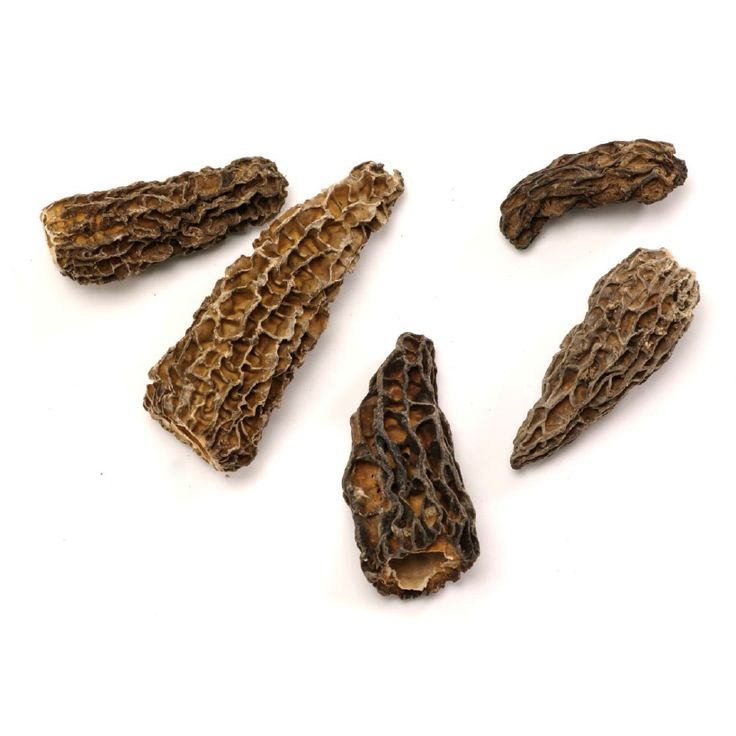 Dried Morel Mushrooms @ https://houseofcaviarandfinefoods.com/mushrooms/dried-morel-mushrooms-detail #mushroom #caviar #blackcaviar #finefoods #gourmetfoods #gourmetbasket #foiegras #truffle #italiantruffle #frenchtruffle #blacktruffle  #whitetruffle #albatruffle #gourmetpage #smokedsalmon #frozenporcini #curedmeets #belugacaviar #ossetracaviar #sevrugacaviar #kalugacaviar #freshcaviar #finecaviar #bestcaviar #wildcaviar #farmcaviar #sturgeoncaviar #importedcaviar