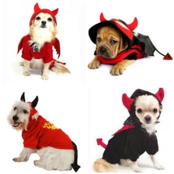 Disfraces de diablo para perros - Saca ideas para hacerlos en casa