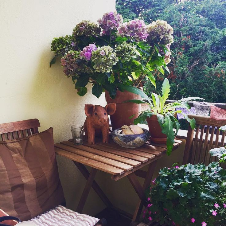 :: My little hideaway,... ����☀️ :: There is enough space for plants & flowers even in the smallest place :: #gardening #balconygardening #mayapple #geranium #lavender #hostahybrid #plantainlily #thyme #clematis #chephalanthus #graybeard #jasmine #balcony #balconyview #balkongärtnern #maiapfel #waldrebe #jasmin #lavendel #funkie #schokoladenblume #chocoladeflower #jakobsleiter #jacobsladder #platzistinderkleinstenhütte http://misstagram.com/ipost/1571187031890893377/?code=BXN-kfvjppB