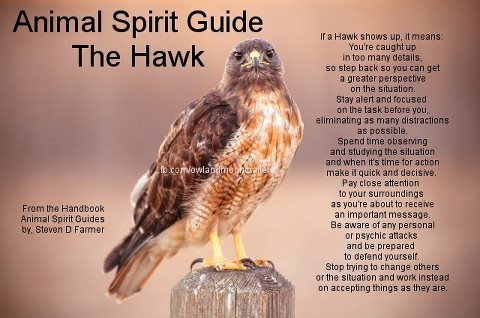 Animal Totems are private to each individual and should not be shared. They come to you because you need them, although you may not know it at the time. However, I WILL share that the redtailed hawk in one of my totems..and comes when I need to hear it's message. :-)
